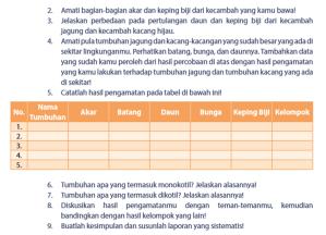 tabel monokotil dan dikotil